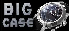 ��BIG CASE WATCH��